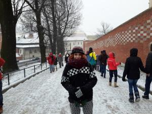 Castillo de Wawel, Cracovia.